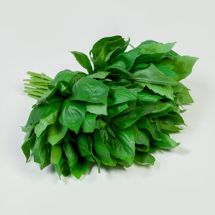 Basil Green » Alion » View our products at Alion