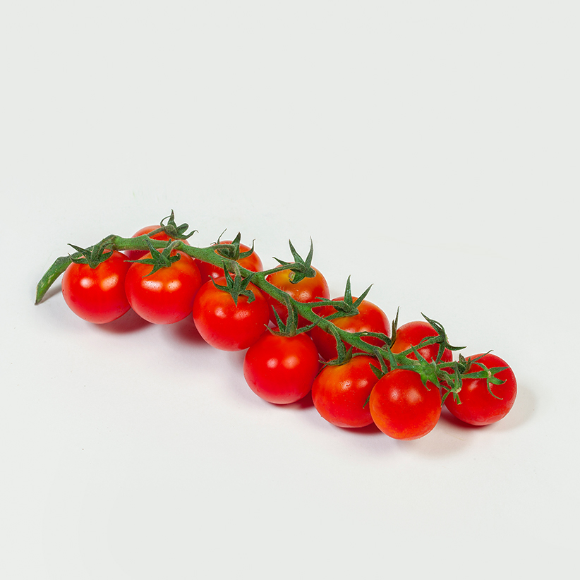 Cherry Tomatoes » Alion » View our products at Alion