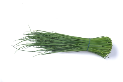 Chives » Alion » View our products at Alion