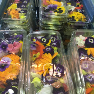 Edible Flowers » Alion » View our products at Alion
