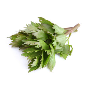 Lovage » Alion » View our products at Alion
