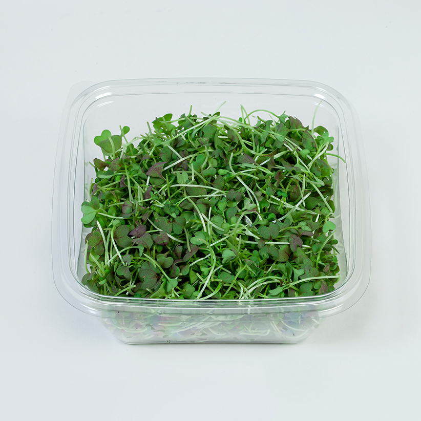 Micro Red Mustard » Alion » View our products at Alion