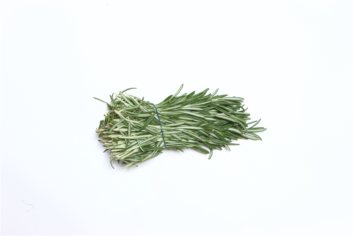 Rosemary » Alion » View our products at Alion
