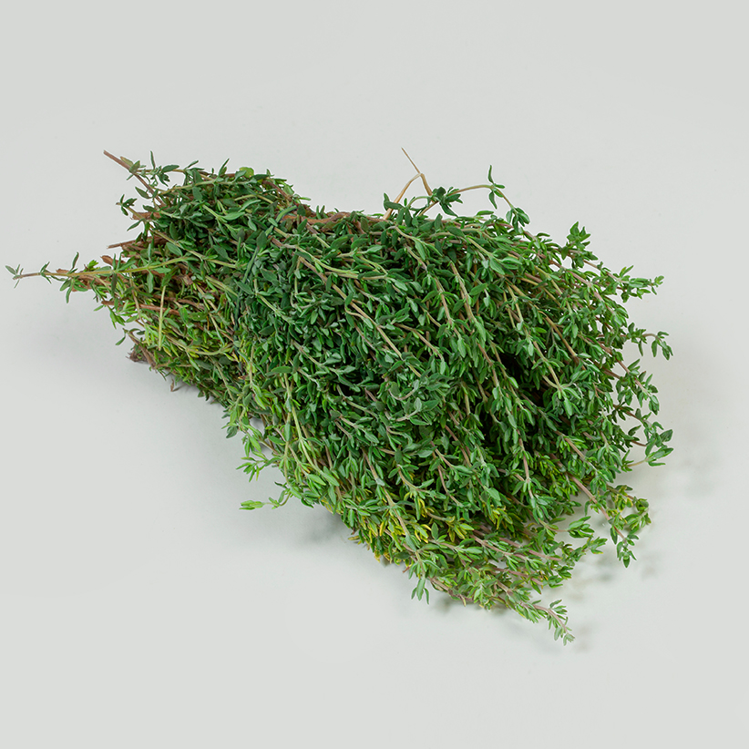 Lemon Thyme » Alion » View our products at Alion
